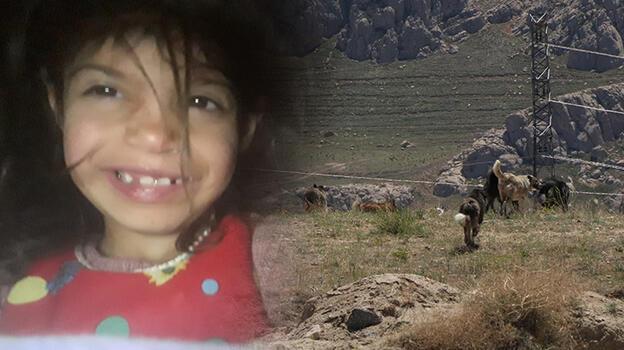 Son dakika... Van'da köpeklerin saldırdığı 6 yaşındaki çocuk öldü