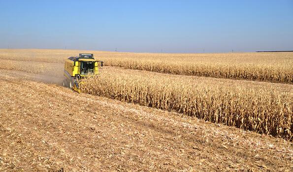 Konya'da çiftçiler Erdoğan'ın açıkladığı hububat alım fiyatlarından memnun