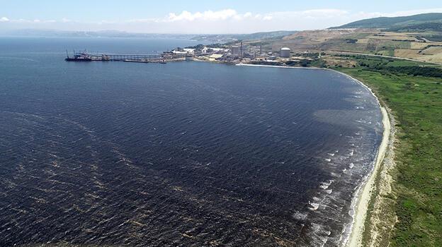 Marmara Denizi'nde bir şok daha! Şimdi de siyaha büründü