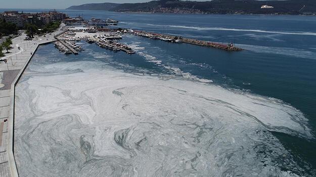 Çanakkale Boğazı'nda deniz salyası yoğunluğu