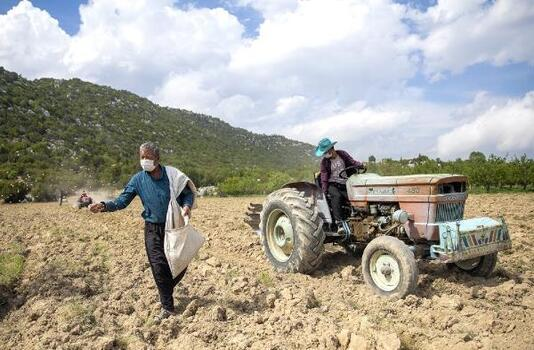 Büyükşehir'den üreticiye tohum desteği