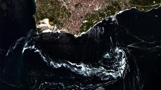 İstanbul'da müsilaj yoğunluğu azaldı! İşte sebebi