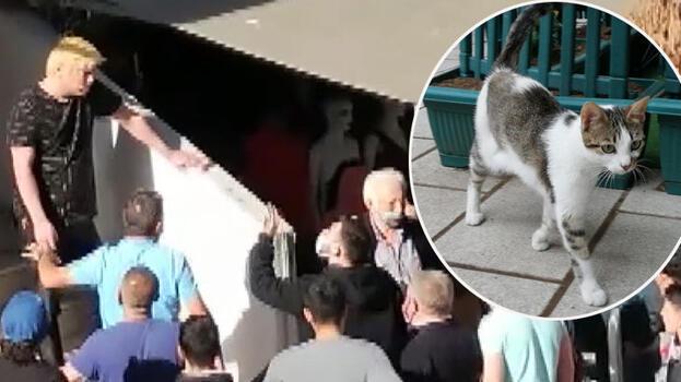 Kedi yediğini itiraf etti mahalleli linç girişiminde bulundu
