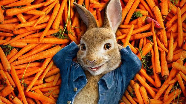 Bir film önerisi: Peter Rabbit-Kaçak Tavşan