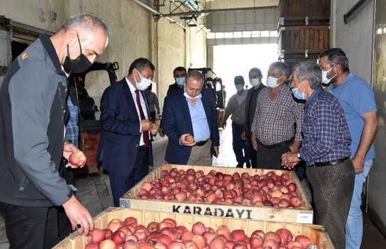 Eğirdir'de elma için toplantı