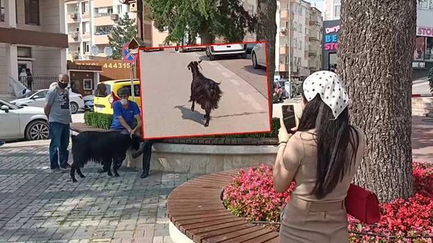 Yer: Bursa... Otomobilden kaçtı, trafiği birbirine kattı