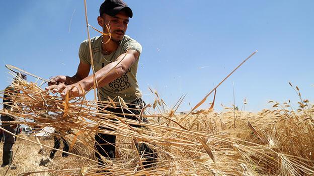 Gıda krizi: Fazla un bulunduran fırıncıya gözaltı