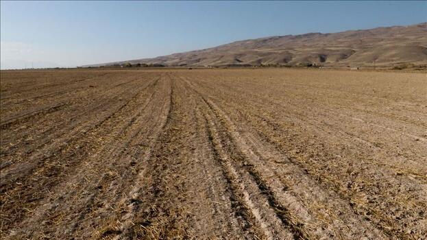 Van'da tarım ve hayvancılık projelerine 24 milyon lira hibe desteği verildi
