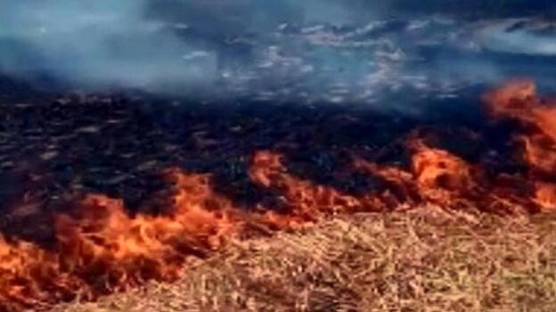 Kopan elektrik telleri neden oldu! Alev alev yandı