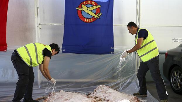 THK kurban derileri için bu yıl da 'ücretsiz tuz' dağıtacak