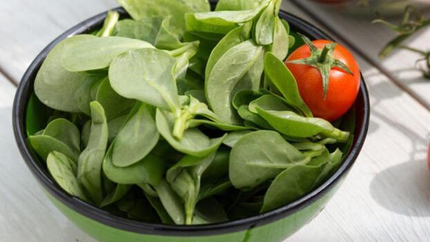 Semizotu yemenin tam zamanı! Semizotunun özellikleri ve faydaları