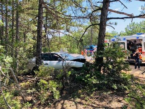 Yoldan çıkıp ağaçlara çarpan otomobildeki çift yaralandı