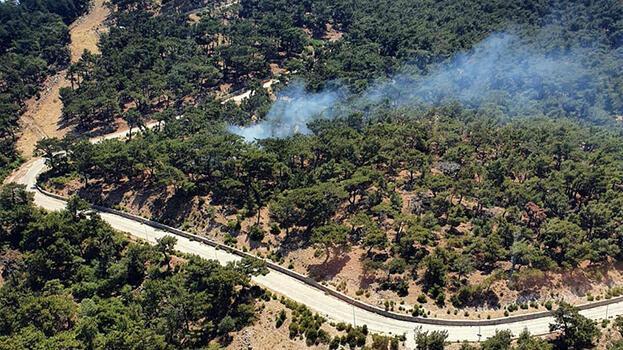 Son dakika... İzmir'de orman yangını! Havadan karadan müdahale ediliyor