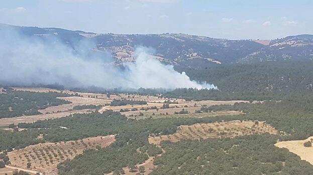 Manisa'da orman yangını; 1 hektar alan zarar gördü