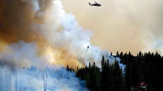 California'da orman yangını devam ediyor!