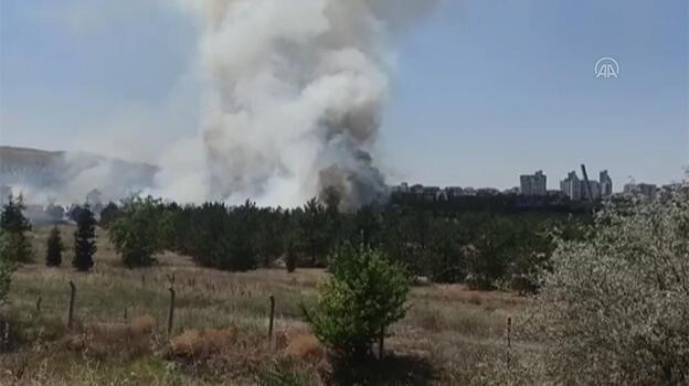 Son dakika: Atatürk Orman Çiftliği'nde yangın