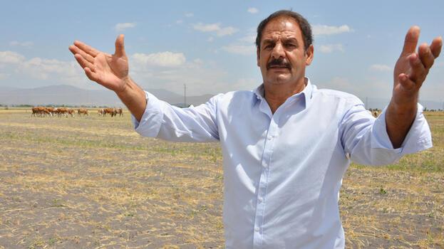 7 bin lira maaşla yerli çoban bulamıyorlar