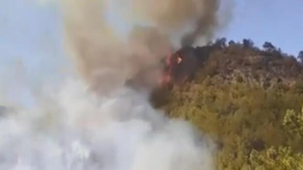 Son dakika... Mersin'in 2 ilçesinde orman yangını! Ekipler sevk edildi