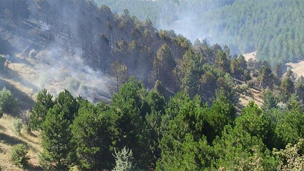 Kırıkkale'de ormanlık alanda çıkan yangın söndürüldü