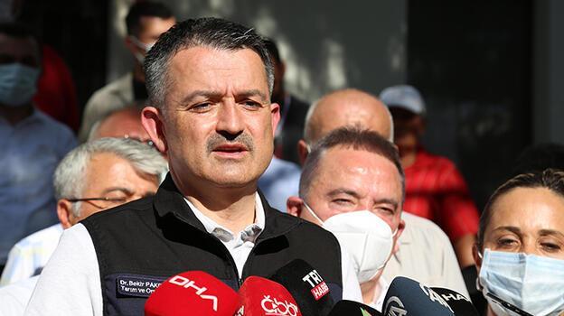 Bakan Pakdemirli'den, Manavgat'taki yangın için açıklama: 53 kişi dumandan etkilendi