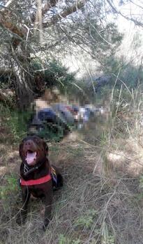 Tekirdağ'da kayıp kişinin cansız bedeni bulundu