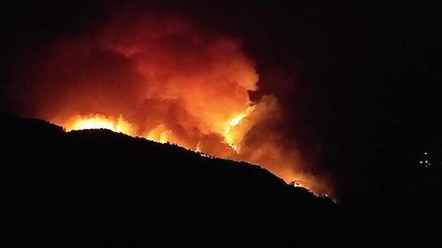 Adana'da korkutan yangın! Bazı vatandaşlar evlerini boşalttı