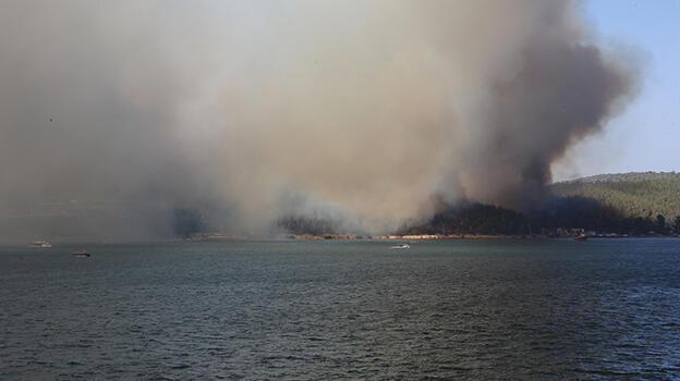 Milas'taki orman yangınıyla ilgili soruşturma başlatıldı