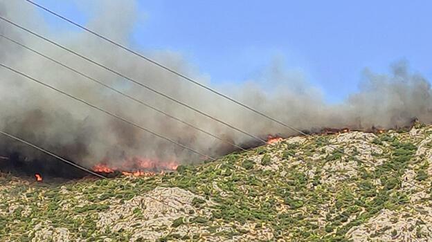 Mersin'de iki ilçedeki yangınlara havadan müdahale yeniden başladı