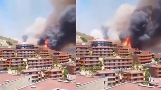 Son dakika... Bodrum'daki yangından geriye bu görüntüler kaldı