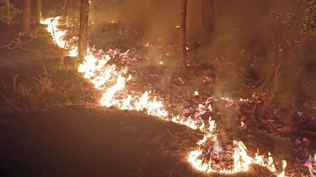 Kahramanmaraş'ta 3 hektar orman alanı yandı