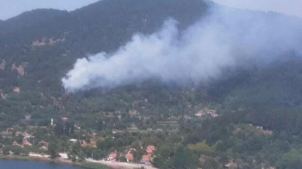 İzmir Ödemiş'te orman yangını! Müdahale başladı