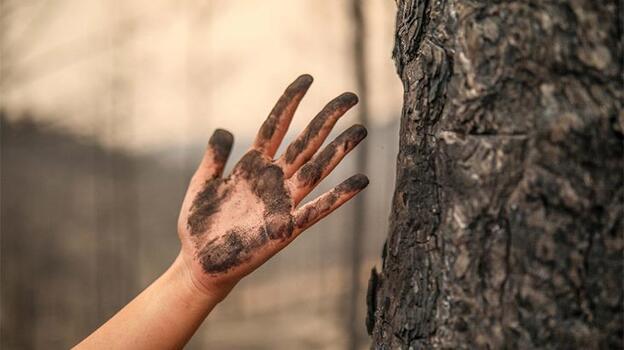 Dünyadan Türkiye'ye yangın felaketi için dayanışma mesajları