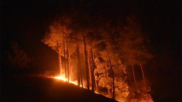 Son dakika! Adana Kozan'daki yangın kontrol altına alındı