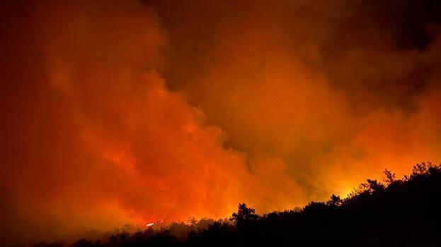 Bakan açıkladı! Fethiye ve Kırıkhan'da yangın kontrol altına alındı