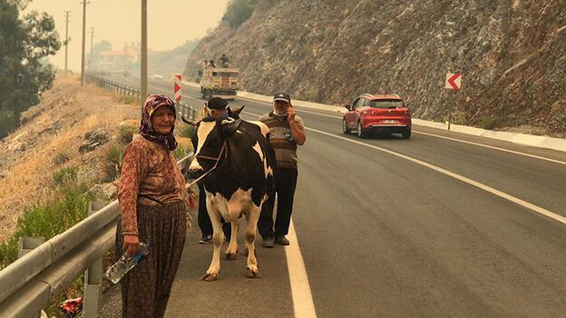 Alanya Belediye Başkanı'ndan uyarı: Güzelbağ'a gelmeyin