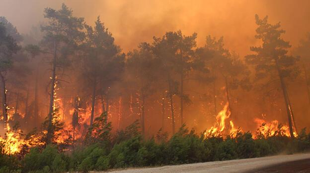 Manavgat'taki orman yangınında 2 işçinin cansız bedenine ulaşıldı