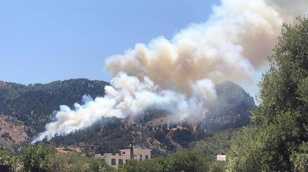 KKTC'de orman yangını kontrol altında