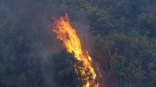 Kazakistan'dan Türkiye'deki orman yangınları nedeniyle dayanışma mesajı