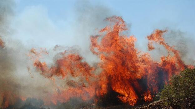Didim'de makilik alanda çıkan yangınla ilgili flaş gelişme