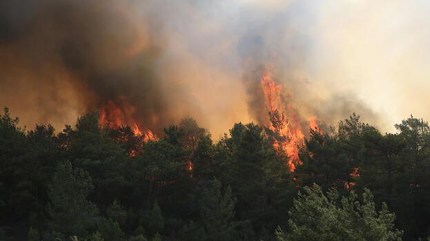 Dev şirketlerden yangın bölgelerine destek! Harekete geçtiler