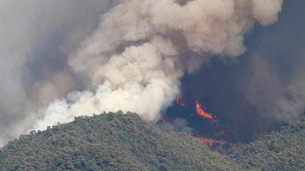 Bakan Koca'dan Mersin'deki yangınla ilişkili açıklama!