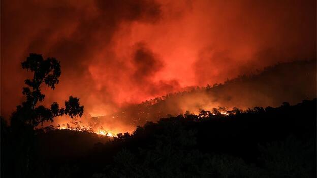 Son dakika! Bakanlık yangınlardaki son durumu açıkladı