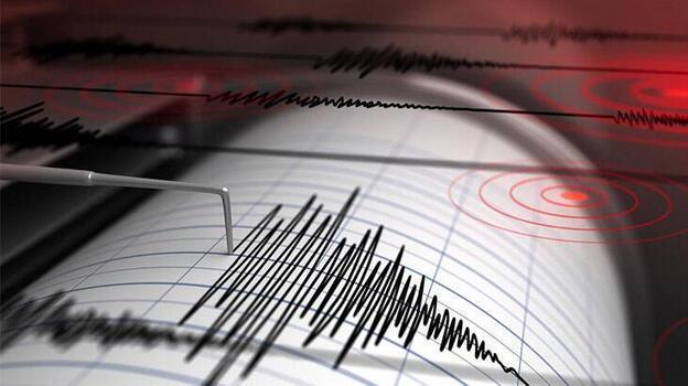 Endonezya'da 5,9 büyüklüğünde deprem meydana geldi