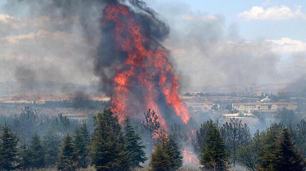 Son dakika... Atatürk Orman Çiftliği'ndeki yangın soruşturmasında jet iddianame!