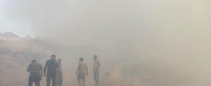 Ormanlık alandaki yangını, itfaiye söndürdü