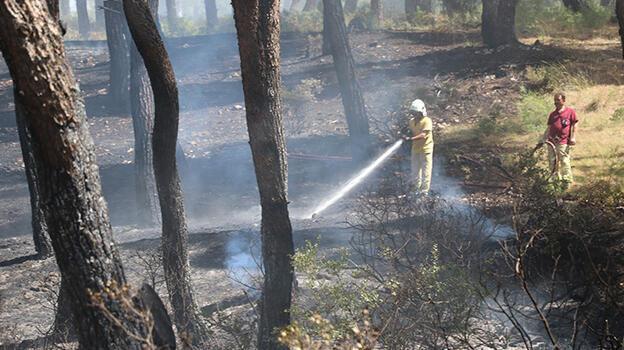 Manisa'da çıkan orman yangını büyümeden söndürüldü