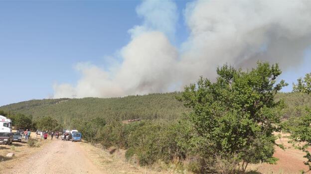 Denizli'de orman yangını! Havadan ve karadan müdahale ediliyor