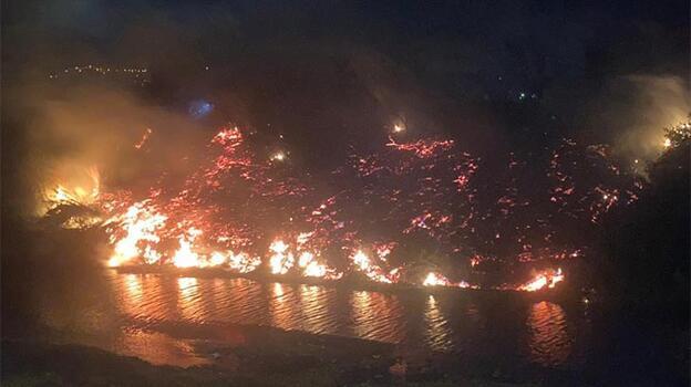Asi Nehri kıyısında otluk yangını