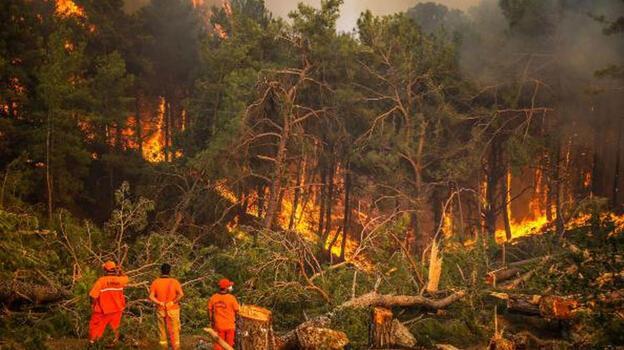 Yangın bölgesinde yeni risk! Çalışmalar hızlandı...