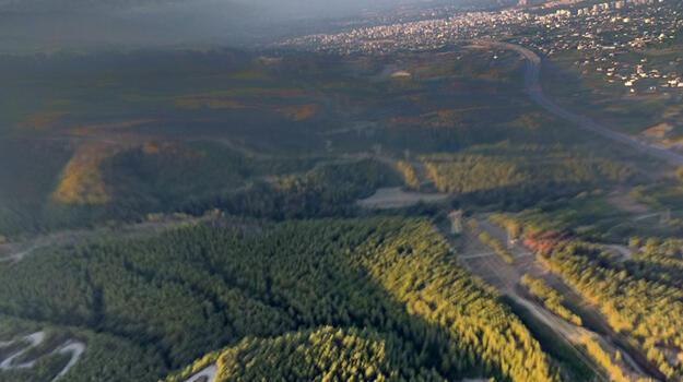 Dörtyol'daki orman yangınında 15 hektar alan zarar gördü!